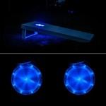 Cornhole Lights Blue