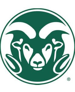 Colorado State Rams Cornhole Boards