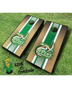 unc charlotte 49ers NCAA cornhole boards Stripe