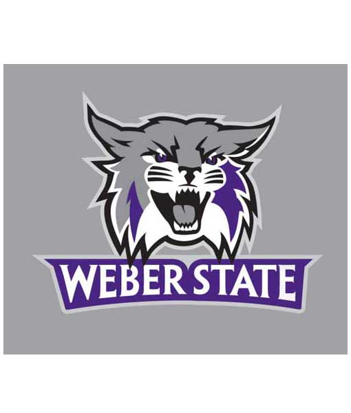 Weber State Wildcats Cornhole Boards