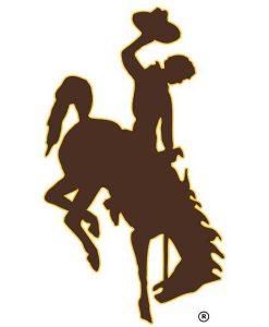 Wyoming Cowboys Cornhole Boards